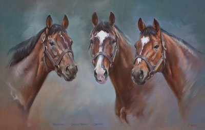 An equine, equestrian, racehorse and horse wall art canvas print of Coolmore Stud stallions Montjeu, Sadler's Wells and Galileo, by Jacqueline Stanhope.