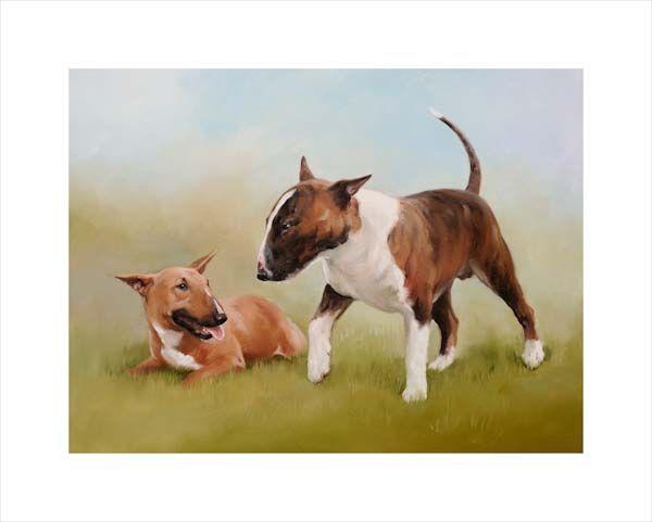 Buddies (Bull Terriers)