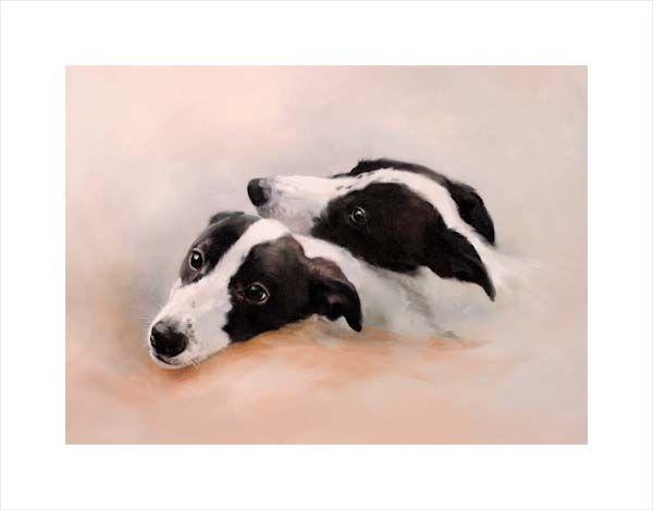 Dominoes (Greyhound Pups)