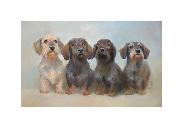Gang of Four (Miniature Wire Haired Dachshunds)