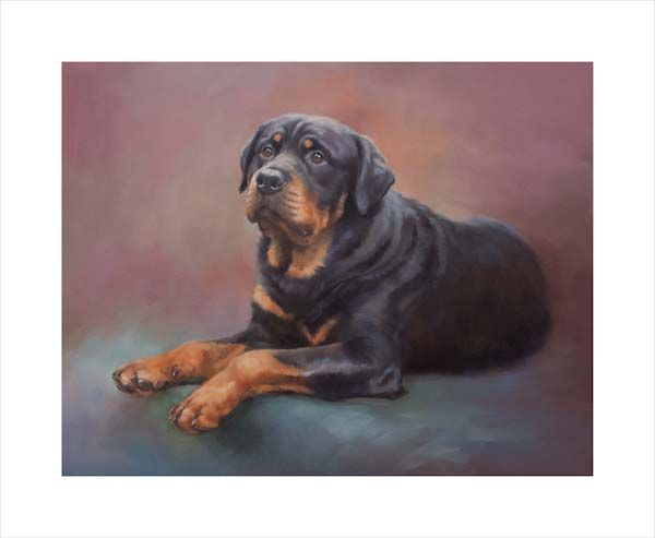Most Loyal: The Rottweiler