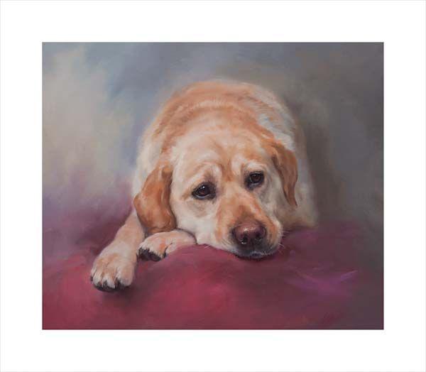 Patience (Yellow Labrador Retriever)