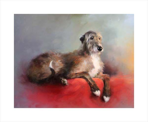 Robbie (Deerhound Lurcher)