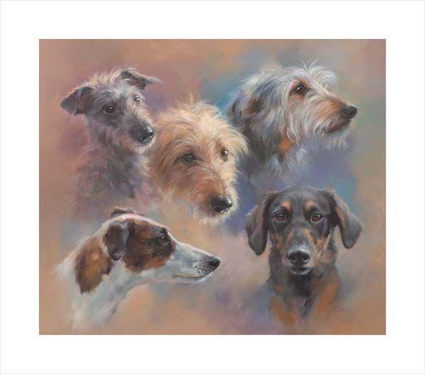 Longdogs and Lurchers